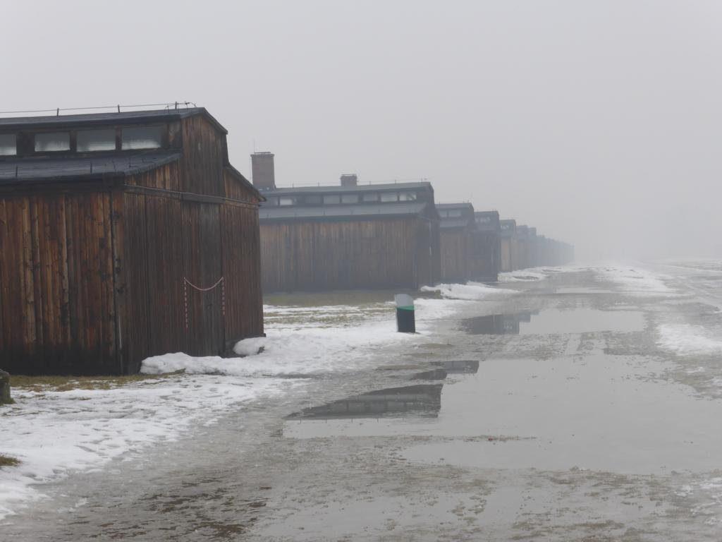 2017-02 Q2 Auschwitz 07