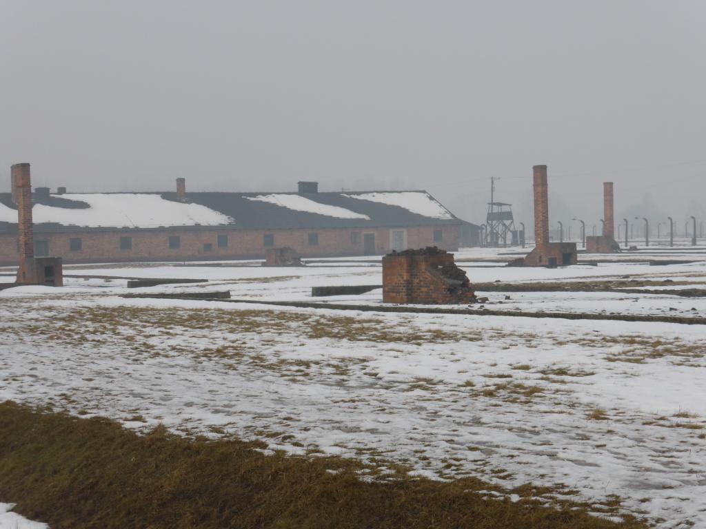 2017-02 Q2 Auschwitz 08