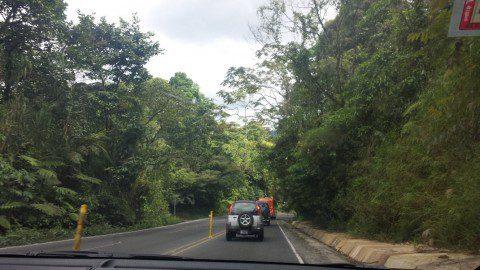15_Costa Rica_Dchungel Straße