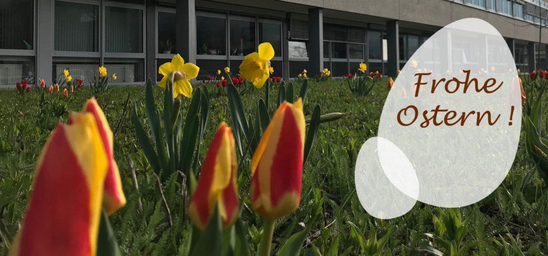 Das ASG wünscht allen ein frohes Osterfest!