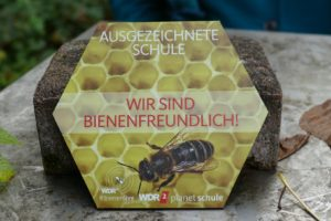 """Das ASG erhält das Siegel """"Bienenfreundliche Schule"""""""